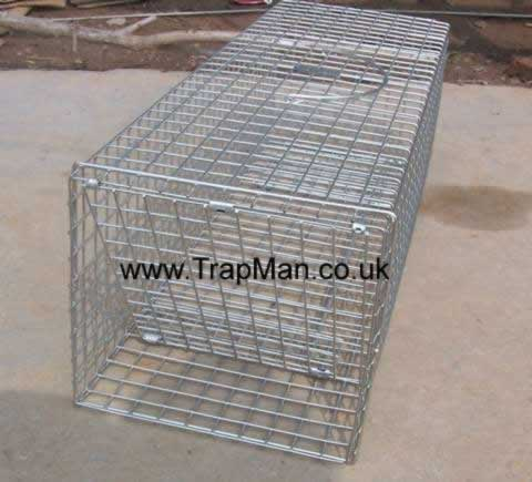 new rabbit trap