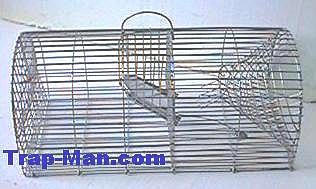 rat traps, multi catch rat trap, selfset rat trap, wooden rat trap, wooden rat trap, Little Nipper rat trap and monarch rat trap