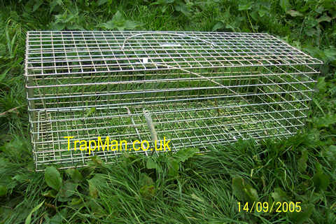 pack of four pro gold rabbit traps